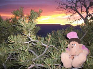 Watching the sun rise over the Grand Canyon