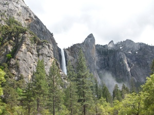 Yosemite - one of the most beautiful places I have ever visited